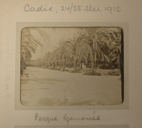 Cadix, 24/25 Mei 1912 / Parque Genovès.  From the album Tangiers. A view of Parque Genovès in Cádiz, Spain.